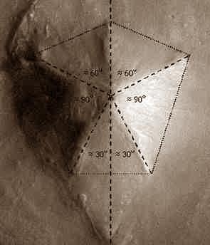 Mars d m